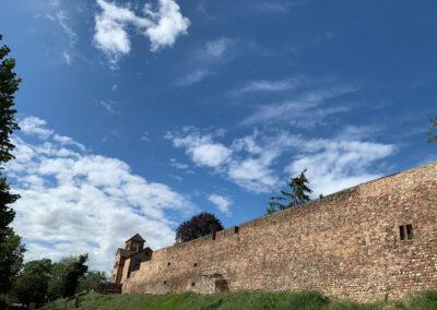 Luther vor 500 Jahren in Worms, Ringanlage am Hochstift